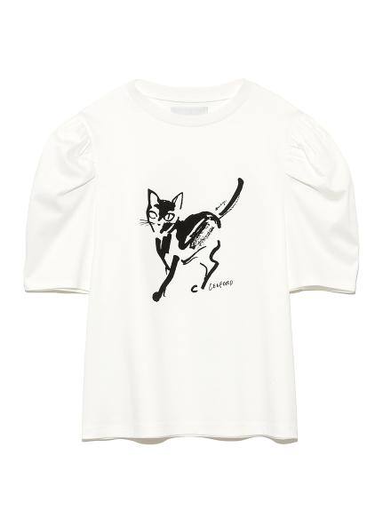 コラボプリントTシャツ(B-36)