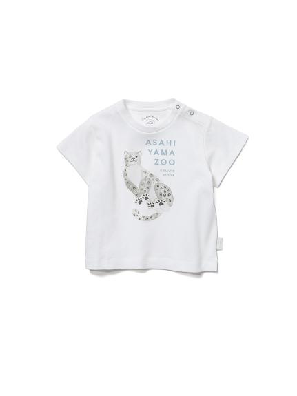 【BABY】【旭山動物園】ユキヒョウ baby Tシャツ(OWHT-70)