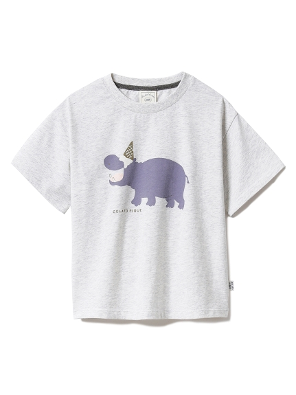 【KIDS】アイスクリームアニマルワンポイント kids Tシャツ(GRY-XXS)