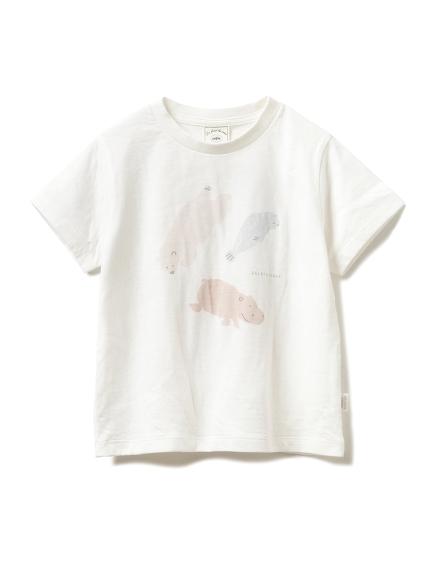 【旭山動物園】ペイントアニマル kids Tシャツ(OWHT-XXS)