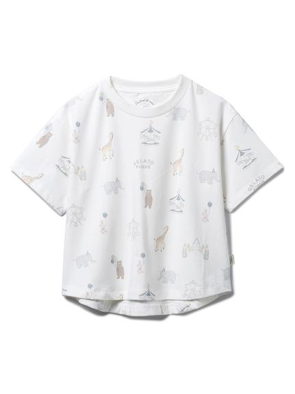 【KIDS】ピケランド kids Tシャツ(OWHT-XXS)