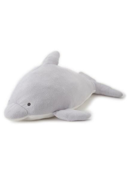 【Sleep】イルカ抱き枕