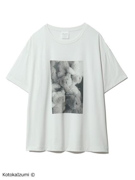 【kotoka izumi】ベアワンポイントTシャツ(BEG-F)
