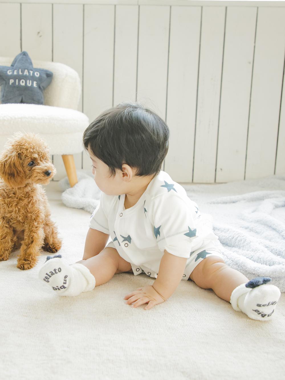 【BABY】'スムーズィー' baby スターソックス | PBGS212707