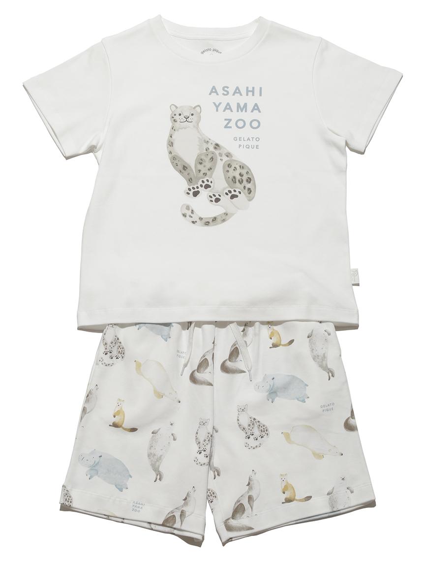 【旭山動物園】【junior】Tシャツ&ハーフパンツSET   PJCT212432