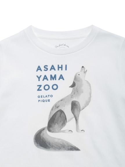 【KIDS】【旭山動物園】オオカミ kids Tシャツ | PKCT212424