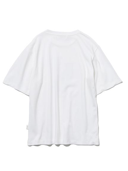 【旭山動物園】 HOMME ユキヒョウTシャツ | PMCT212801