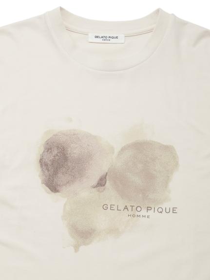 【GELATO PIQUE HOMME】ベイビーズブレスワンポイントロゴTシャツ | PMCT212910