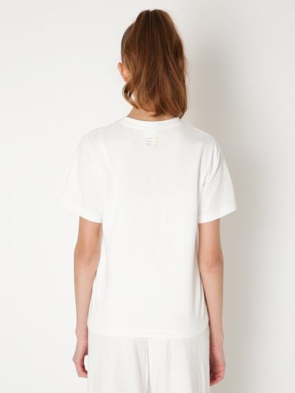 【旭山動物園】ペイントアニマルTシャツ   PWCT202209