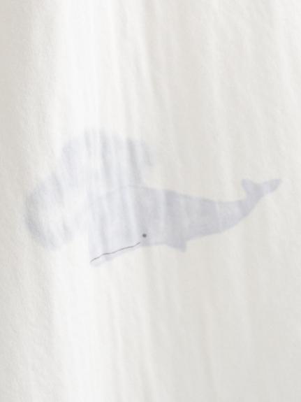 クジラモチーフTシャツ   PWCT211280