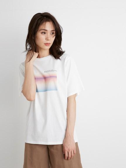 ORGANICSフォトプリントTシャツ(A-F)