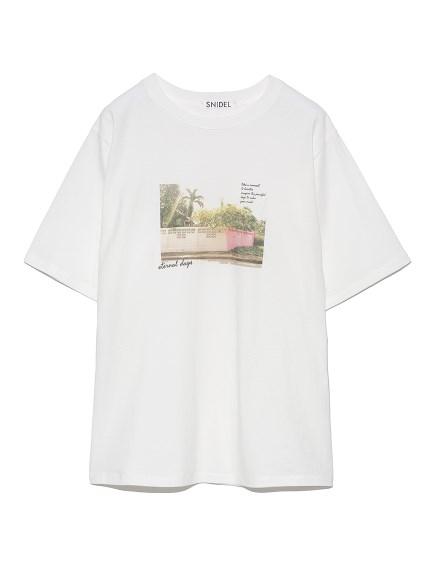 ORGANICSフォトプリントTシャツ(C-F)