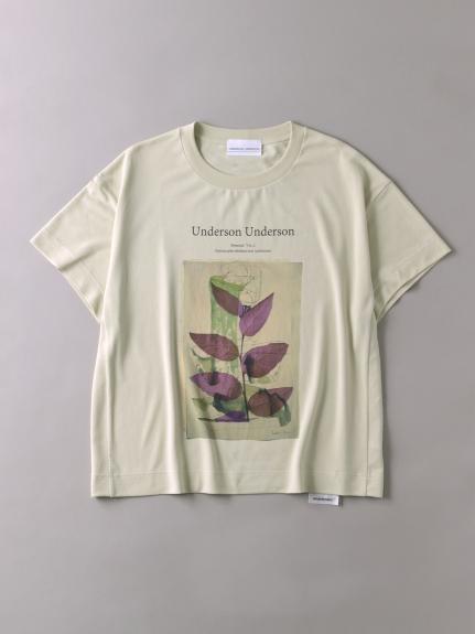 リラックスグラフィックTシャツ Vol.5【ウィメンズ】(IVR-1)
